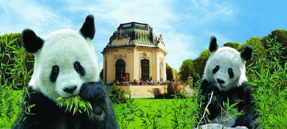 Zoológico de Schönbrunn